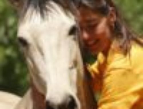 Kiron Method® – Therapies and Coaching Assisted by Equines
