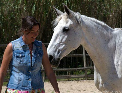 Retiros Quinta do Cavalo Kiron
